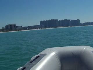 Add Comment To: Dolphin's in the gulf putting on a show for me 6