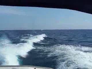 Coast Guard Trip  from:DotComd